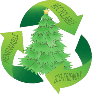 eco friendly christmas tree options